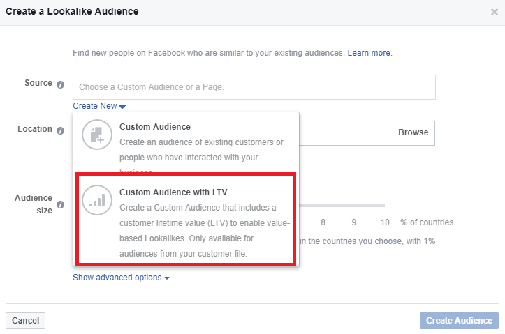 create a custom audience with LTV in Facebook