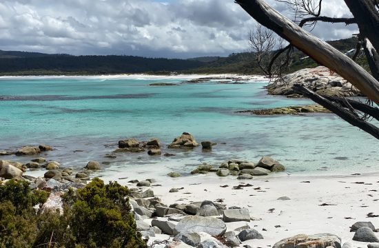Beaches in Tasmania